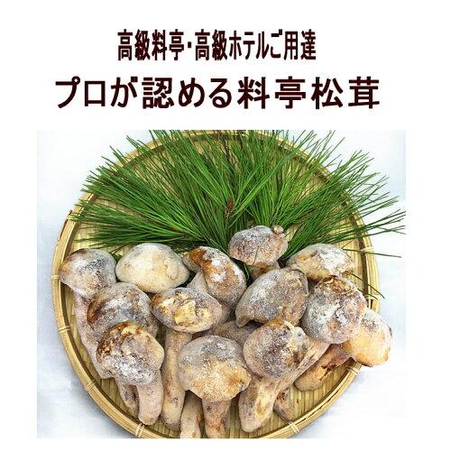 サイズおまかせ料亭松茸3000g【バーベ...