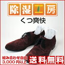 くつやブーツの湿気や臭いを解消する除湿・消臭材(除湿剤・消臭剤・靴用)...