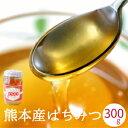 蜂蜜 国産 非加熱 送料無料 300g 新蜜 九州産 天然濃熟はちみつ ご自宅用