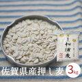 【送料無料】佐賀県産押し麦1kg無添加