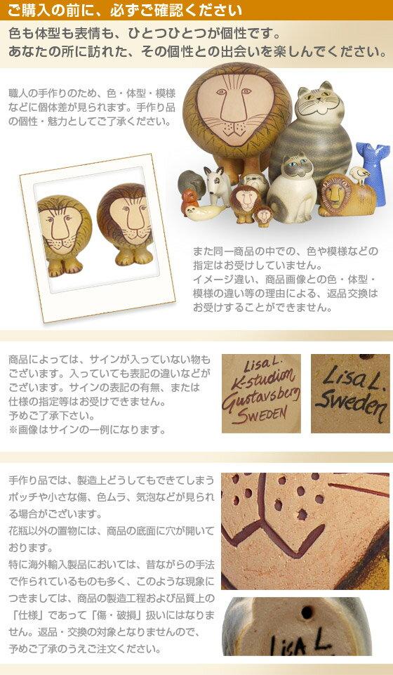 lis_2.jpg