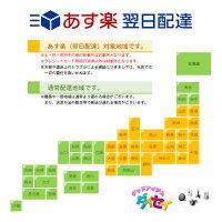 ポーカーチップセットA10種×20枚1〜10000カジノゲーム[PC-2314]【HLS_DU】