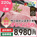 送料無料 サーロインステーキ 220g×2枚 鳥取和牛オレイン55 ステーキ肉 ステーキ 和牛 オレイン55 オレイン...