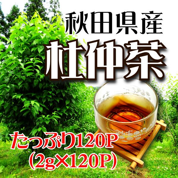 茶葉・ティーバッグ, 日本茶 2g120