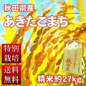 【送料無料!】平成27年度産秋田県産1等米あきたこまち30kgを精米(27kg)お弁当におにぎりに最適!