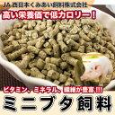 ヤマヒサ 老犬介護用 補助機能付ベストK L 【ペット用品】