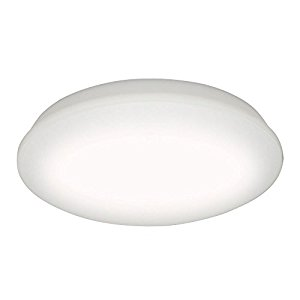 アイリスオーヤマ IRIS LEDシーリング 4.0シリーズ 5200lm12畳調色 CL12DL-4.0 [E010103]