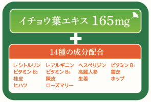 イチョウ葉ドリンク21世紀 機能性表示食品1本(50ml)×10本セット