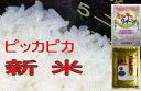 【送料無料】新米23年福島県産会津コシヒカリ会津ミルキークィーン5kgずつ合計10kg 送料無料 水 米 ドリンクあす楽対応【あす楽対応_東北】【あす楽対応_関東】【楽ギフ_のし】【楽ギフ_のし宛書】【楽ギフ_送料無料0113】05P13Feb12