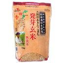 大潟村あきたこまち発芽玄米無洗米1kgx5個