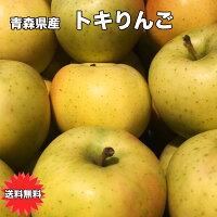 訳あり・青森県産トキりんご
