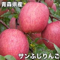 訳あり・青森県産サンふじりんご糖度保証