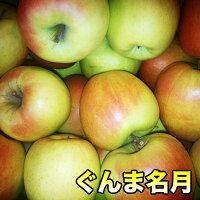 幻のりんご青森県産ぐんま名月わけあり