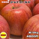 【訳あり】青森県産ジョナゴールド 約18kg サイズばらばら...