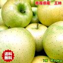 りんご 王林 りんご 訳あり 10kg 送料無料 りんご 青