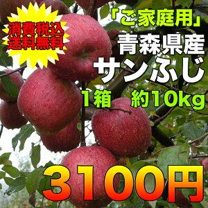 【ご家庭用】青森県産サンふじりんご 約10kg 糖度保証 サイズいろいろ  ※沖縄離島は除く【…