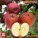 【ご家庭用★送料無料】青森県産サンふじりんご 約10kg 糖...