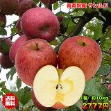 りんご サンふじ りんご 訳あり 10kg 送料無料 常温便 りんご 青森 りんご 10kg りんご サンふじ さんフジ ご家庭用 クール対応 糖度保証 CA貯蔵 当店のりんごは糖度保証 毎日の健康の為に、そのままでもジュースにしても