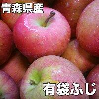 訳あり・青森県産ふじりんご