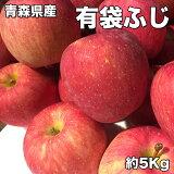 訳あり 青森県産 有袋 ふじ りんご 5kg 糖度保証 サイズいろいろ りんご 5Kg クール便配送可