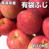 訳あり 青森県産 有袋 ふじ りんご 10kg 糖度保証 サイズいろいろ りんご 10Kg クール便配送可