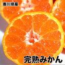 送料無料 香川県産 完熟みかん Sサイズ 10kg みかん
