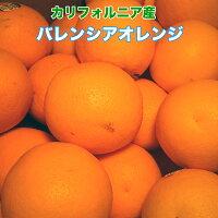 アメリカ産バレンシアオレンジ