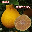 【送料無料】和歌山県産有田デコちゃん Lサイズ 約10kg ...