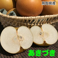 鳥取県産あきづき橋本さんちの梨シリーズ