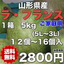 【送料無料】山梨県 ラ・フランス 約5kg(12〜16個入)...