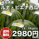【送料無料】高知県産ルナピエナ西瓜 5kg〜7kg 【RCP】※北海道・沖縄県離島へは別途送料必要