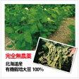 【得トク定期便】有機オーガニック蒸し大豆×20袋(2箱)