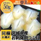 ★宮城県産お刺身用つぶ貝50g/つぶ貝/ツブ/お刺身