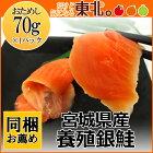 お刺身用銀鮭70g/銀鮭/サケ/さけ/お刺身/宮城/東北