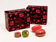 チョコレートは絶対贈りたい・・でもマカロンもと言う方はホワイトデーショコラマカロン