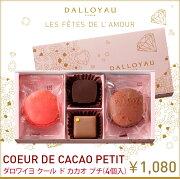 ダロワイヨ ホワイト マカロン チョコレート カカオ・プチ スイーツ