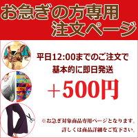 丈つめ500円