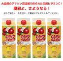 30%カムカム果汁入り5倍濃縮飲料1本紙パック500ml×4本 賞味期限2021年10月1日★乾燥季節のスーパービタミンC&ポリフェノール補給に♪★ビタミンC世界一♪美味しさにこだわりました〜♪