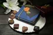 ショコラトリーフランス フレンチ ショコラ ヴォワザン ホワイト