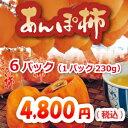 あんぽ柿 蜂屋柿トレー 贈答用6パック(1パック230g)、福島県伊達より【お歳暮】JA伊達み…