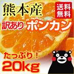【 送料無料 】熊本産 訳あり ポンカン 20kg ( 10kg×2箱 )【 ぽんかん みかん 柑橘 完熟 九州 熊本 】