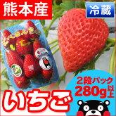 ■熊本県産いちご■丹部さんの『かおり野』苺1パック2段入り