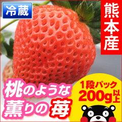 イチゴなのに桃の香り?これって本当にイチゴ?■熊本県産 いちご■ 丹部さんの『桃薫(とうく...