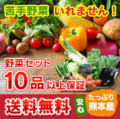 ≪クール便 送料無料≫ 九州 熊本産 定番野菜10品 ⇒ 16品保証 たっぷり くまもと野菜セット【RCP】