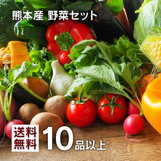 熊本産野菜セット