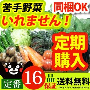 【定期購入】 レビュー件数5,800件超!ランキング1位獲得の九州 熊本産 定番野菜10品 ⇒ 16品保証 たっぷり くまもと野菜セット
