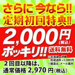 定期初回特典2000円ポッキリ!