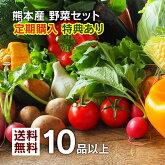 一番売れてる!野菜セット定期購入