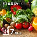 【 送料無料 】 九州 熊本産 定番旬野菜 7品以上保証 安心 くまもと ミニ 野菜セット ……