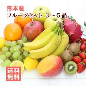 【 送料無料 】 九州 熊本産 フルーツセット ≪ 旬の果物 3〜5品 セット ≫朝食やデザート、スムージーなど、いつも...